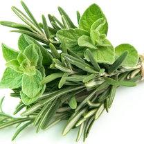 cukrzyca zioła