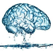 odwodniony mózg