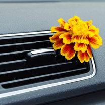 odświeżanie samochodu