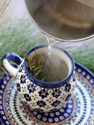 Jak zrobić zdrowotny napój z sosny