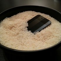 ryż suszenie