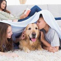 pies i dzieci