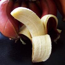 czerwone banany właściwości