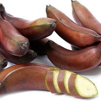 czerwone banany właściwości odżywcze