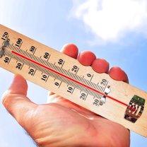 Tegoroczne lato nam nie odpuszcza. Temperatury coraz częściej wykraczają poza 30 stopni Celsjusza...