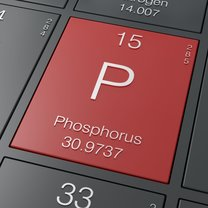 Hipofosfatemia to mało znane schorzenie, które charakteryzuje się znacznym niedoborem fosforu we krwi...
