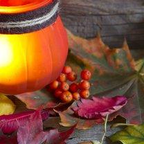 Jesień, mimo że bywa zimna i deszczowa, nie musi być wcale nieprzyjemna. W dużej mierze to od nas...