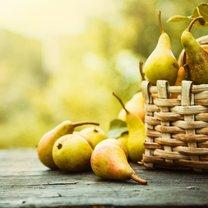 Gruszki to nie tylko smakowite wnętrze, ale także bogactwo zdrowotnych właściwości i korzyści. Zapobiegają...