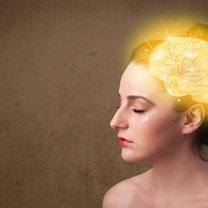 Mózg, zwany procesorem naszego organizmu, jest nadal zagadką dla naukowców, gdyż zbadany jest jedynie...