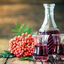 Jarzębina to jeden z najpiękniejszych jesiennych symboli. Jej czerwone owoce potrafią stworzyć piękny...