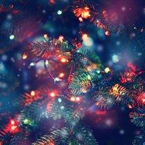 Drzewko świąteczne to jeden z najpiękniejszych symboli Świąt Bożego Narodzenia. Jeśli decydujemy...