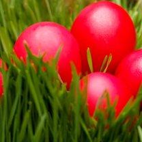 Wielkanoc tuż, tuż; zatem w ferworze świątecznych porządków nie wolno zapomnieć, oczywiście, o...