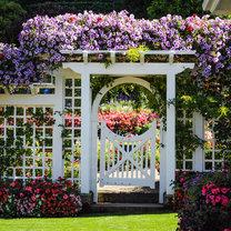 Coraz więcej osób dba o swoje ogrody i tworzy ciekawe aranżacje, zapewniające nie tylko komfort wypoczynku...