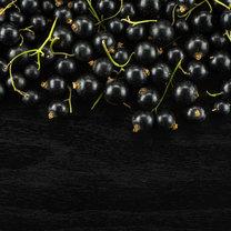 Czarna porzeczka to jeden z najpopularniejszych krzewów, który rośnie na naszych działkach. Jest to...