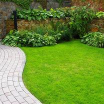 Gęsty i zielony trawnik to duma każdego posiadacza ogrodu. Niestety, często zdarza się, że nie wygląda...