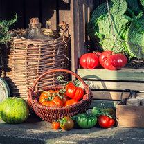 Przed zimą wielu z nas gromadzi zapasy warzyw, aby móc cieszyć się ich walorami przez kilka kolejnych...