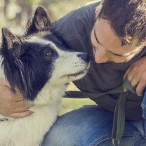 Wielu z nas przyznaje, że pies jest najlepszym przyjacielem człowieka. Jego bezwarunkowa miłość jest...