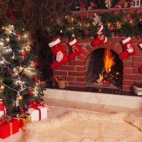 Marzysz o zjawiskowo pięknym świątecznym drzewku w mieszkaniu, ale nie wiesz, na jaki gatunek postawić?...