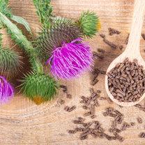 Ostropest plamisty to roślina, która występuje w Polsce powszechnie, a do tego posiada liczne właściwości...