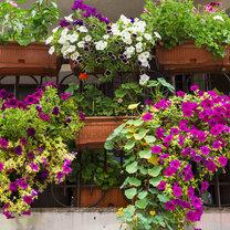 Wiosna to idealny czas na gruntowne porządki. To również dobry moment, aby przygotować balkon do sezonu...
