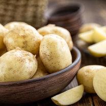 Ziemniaki, początkowo znane tylko w Ameryce Południowej, dotarły do Europy dopiero w XVI wieku i nie...