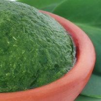 Żyworódka pierzasta to popularna roślina ozdobna, która wykazuje liczne właściwości lecznicze...