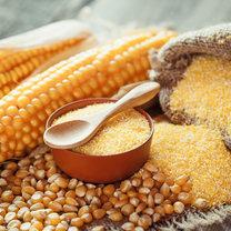 Tradycyjna mąka pszenna jest niezastąpiona w polskiej kuchni. Powstają z niej nie tylko wypieki, takie...